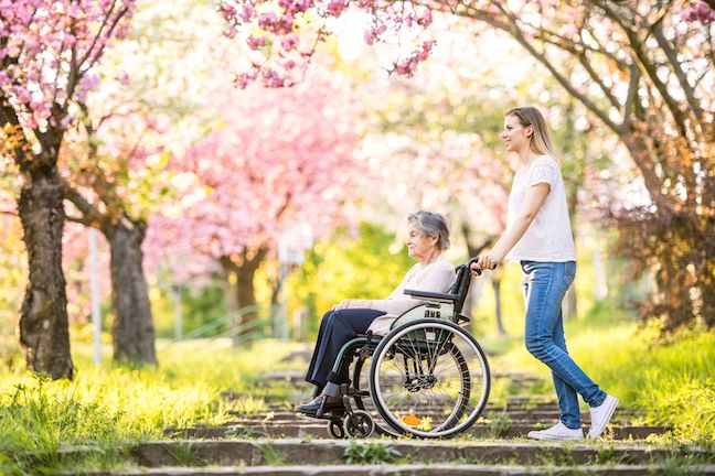 Elderly grandmother in wheelchair with an adult granddaughter on a walk outside in spring nature.